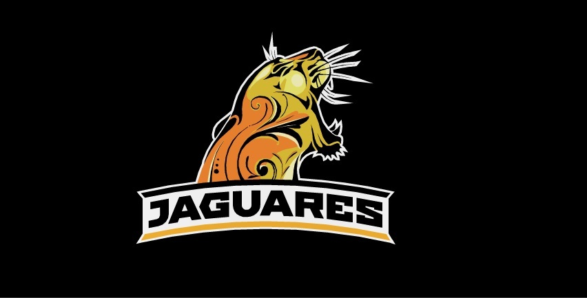 Jaguares-Hurricanes(video)