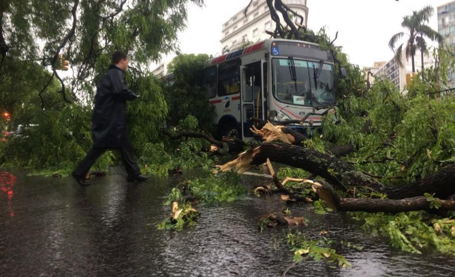 Los destrozos tras la tormenta Uruguay (fotos-video)