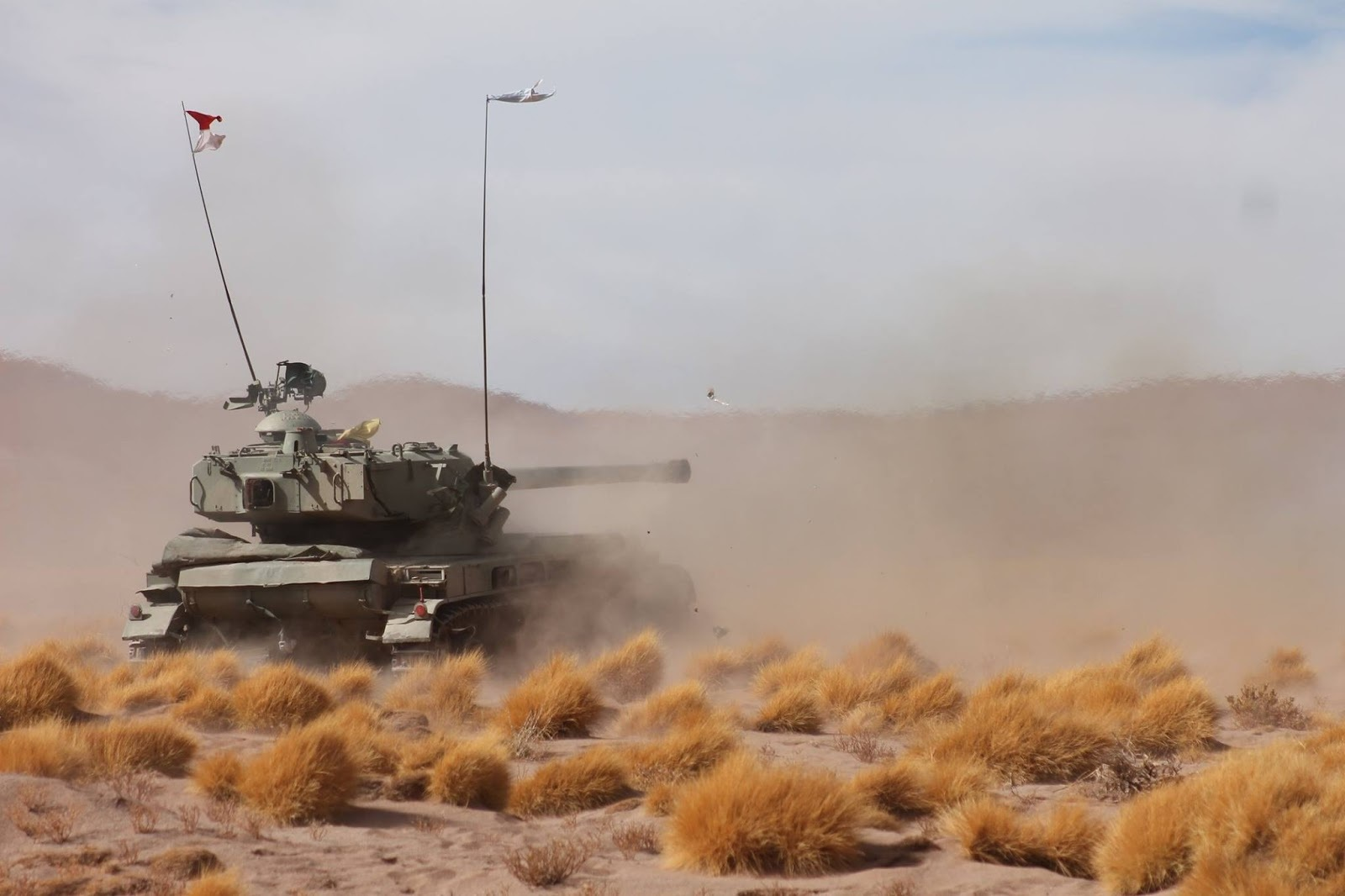 AMX13 Ejercito Argentino