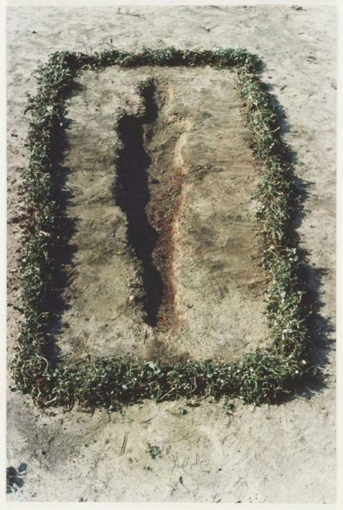 Ana Mendieta published in Arte