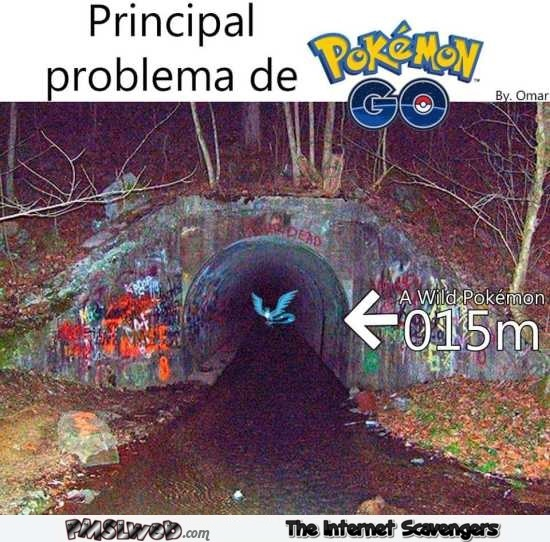 go pokemon