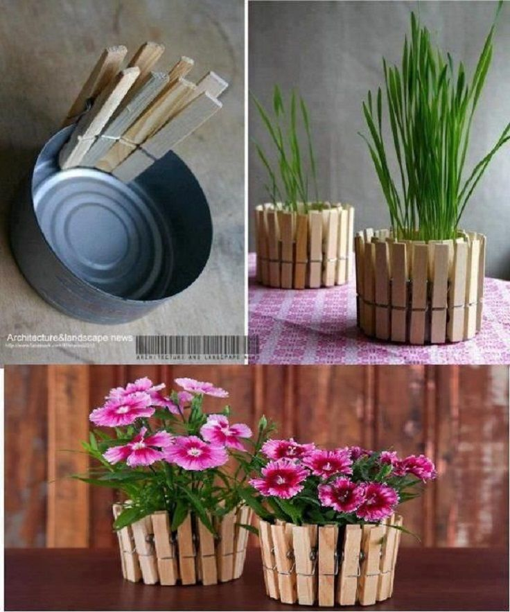 20 ideas geniales para decorar tus plantas!